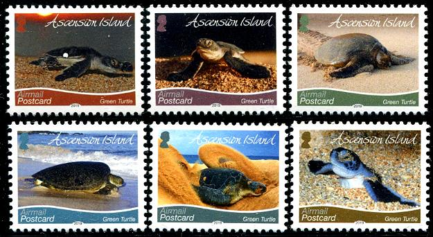 ASCENSION - Green Turtles New Printing 2019 with new size & perfs (6)