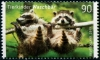 GERMANY - Scott NEW ISSUE Baby Animals 2019 - Racoons (1)  Another stamp from Herrick Stamp Company