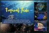 GRENADA - Tropical Fish Sheetlet I of 3 Different (P/3 @ Face) (1)