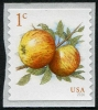 UNITED STATES - Apples Self-Adhesive Coil (1)